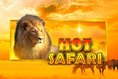 Hot Safari Review Pragmatic Play